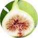 Figs Calimyma